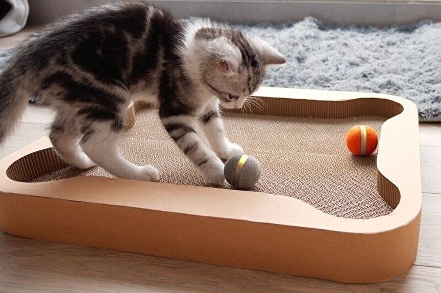 Cheerble sahası, oluklu mukavva yüzeyi ile kedilerin tırmalama ihtiyacına da alternatif bir yüzey sağlıyor.