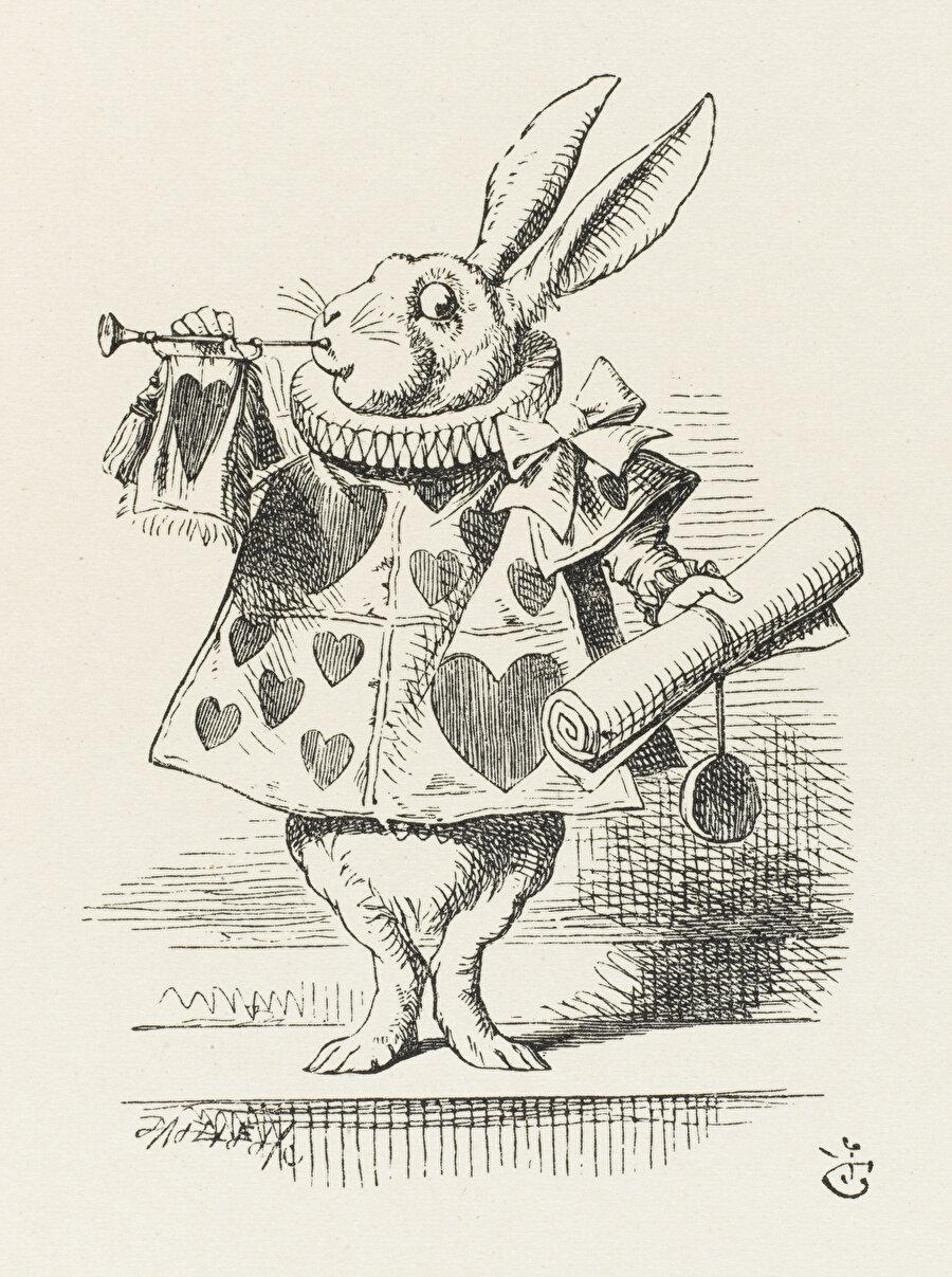Alice'in Düşistan yolculuğunun başı karanlık, ortası tatsız, sonu kararsızdır.