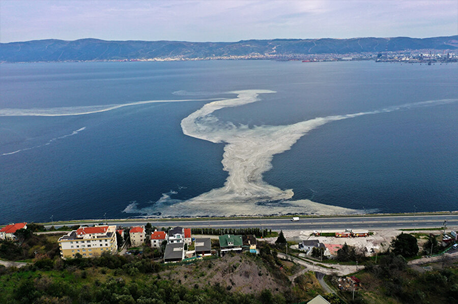 İzmit Körfezi'nde korkutan görüntü: Deniz beyaza büründü