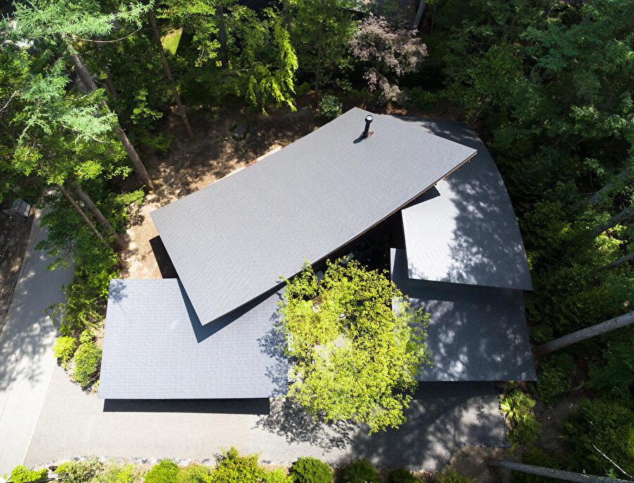Çatı yüzeylerinin yerleşim düzeni.