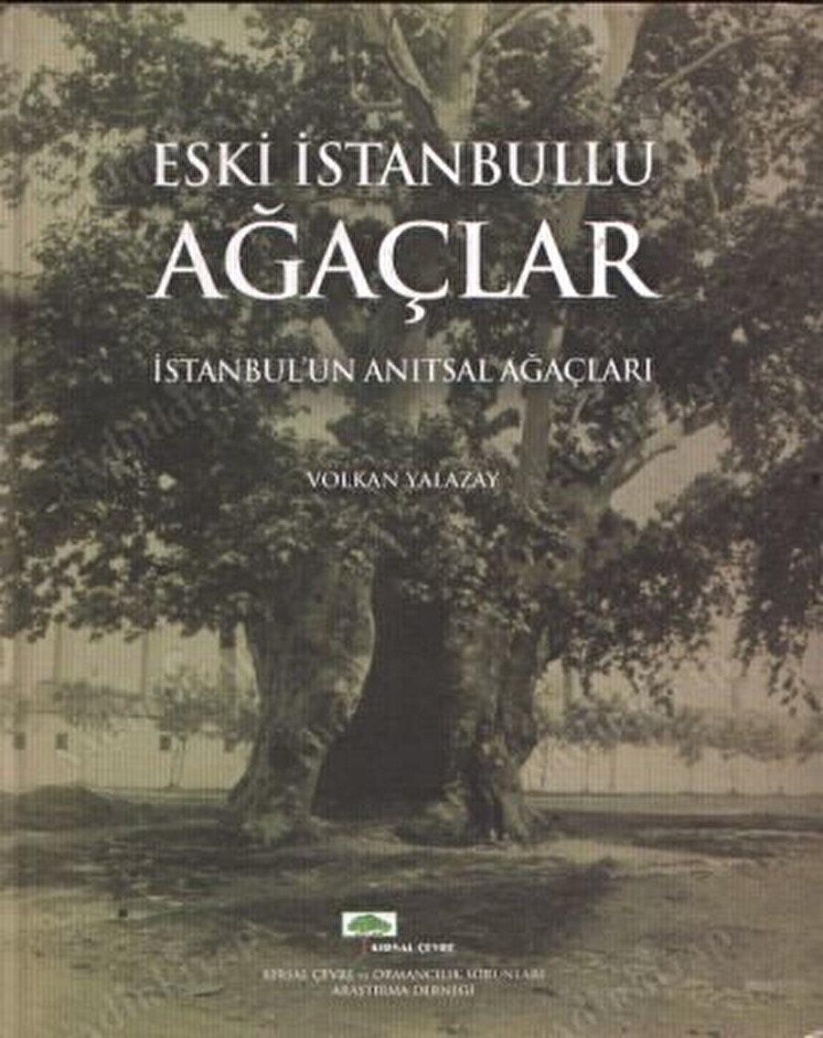 Eski İstanbullu Ağaçlar