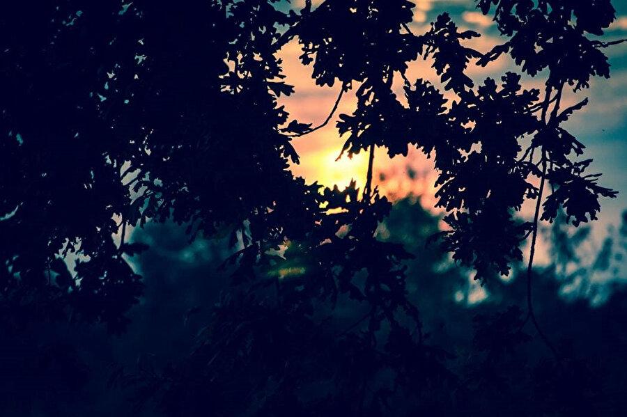 Vadiye tırmandı. Batmak üzere olan güneş son demleriyle terletiyordu.