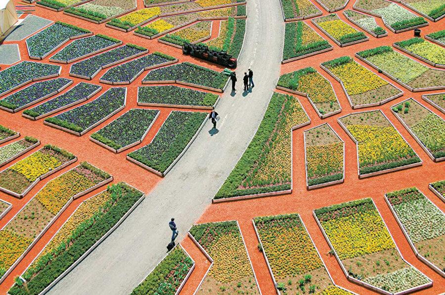 Perspektif değişimi, mikro ölçekten makro ölçeğe, tüm bahçe gösterisinde farklı eklemlerden oluşan kırmızı bir ağ olarak ilerliyor.