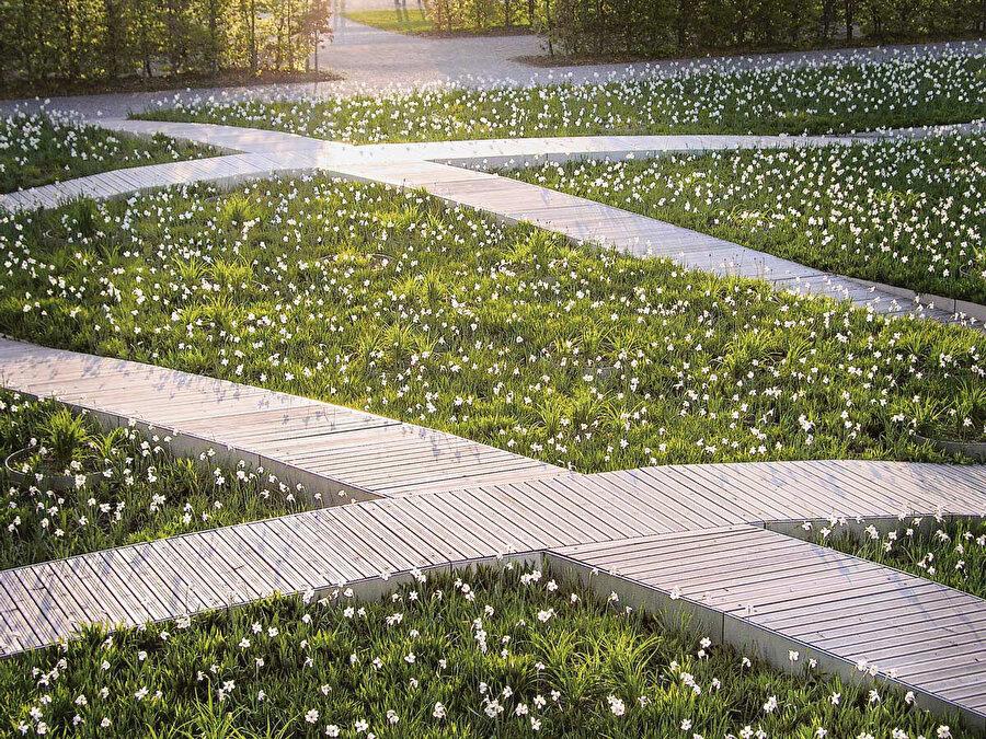 Yaşamın temel taşı olan hücre, Rainer Schmidt tarafından tasarlanan ve Christine Orel tarafından hayata geçirilen çiçek halısının temel fikrini oluşturuyor. Ziyaretçiler, farklı büyüklüklerdeki 127 bölmeli çiçek halısını temas ederek deneyimliyor.