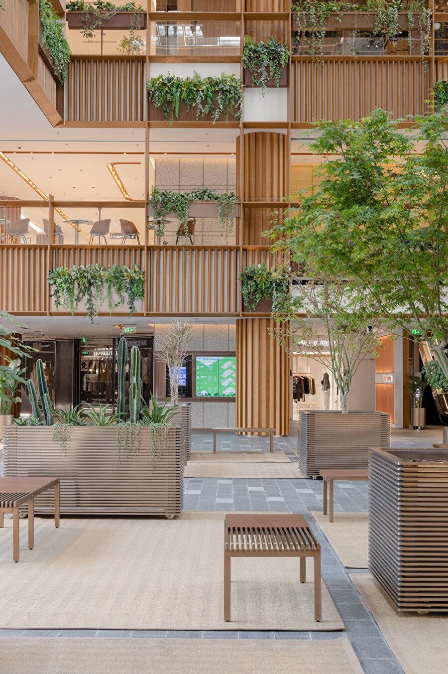 Zemin katta bulunan bitkiler, rahat hareket ettirilebilmesi için tekerlekli saksılara dikiliyor.