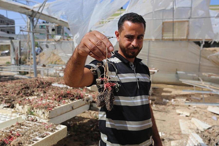 İsrail sınırına yaklaşık 1 kilometre mesafede 21 dönümlük arazinin sahibi Filistinli Hammade Hudayr, İsrail'in saldırılarından etkilenen çiftçilerden.