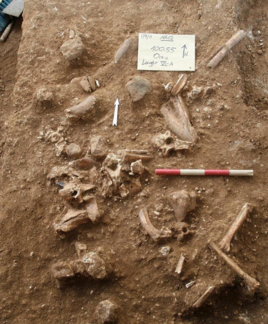 Bu insanların Neandertallerin ataları olabileceğini öne sürdü
