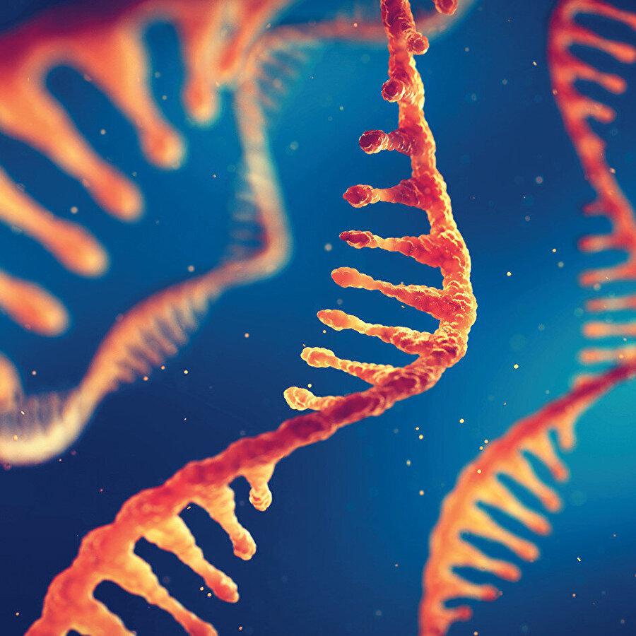 Şimdilik nanonun yaygınlaştığı bir dönemdeyiz ve muhtemelen mRNA tekniği ile piko dönemi başladı