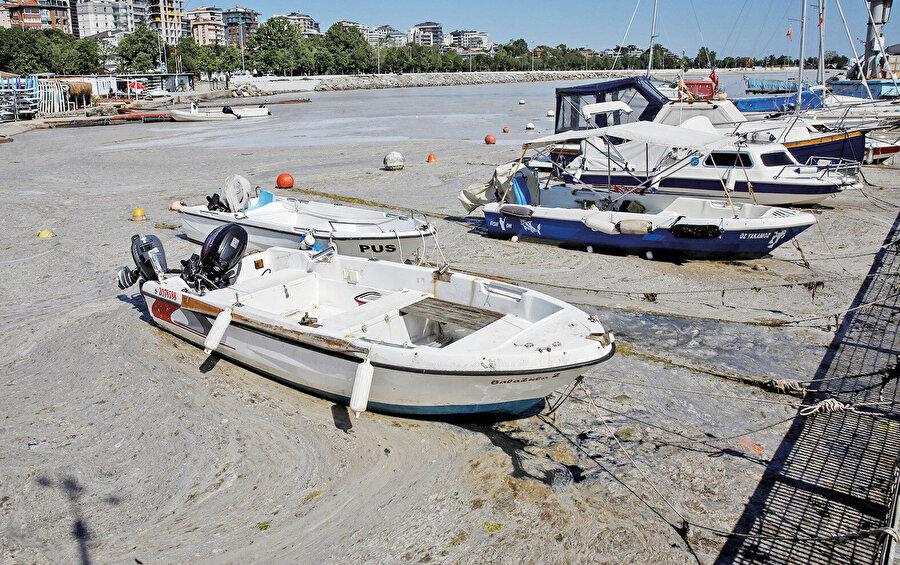 Karadeniz'e kıyısı olan ülkeler ile Tuna Nehri'nden gelen kirlilik engellenmelidir.