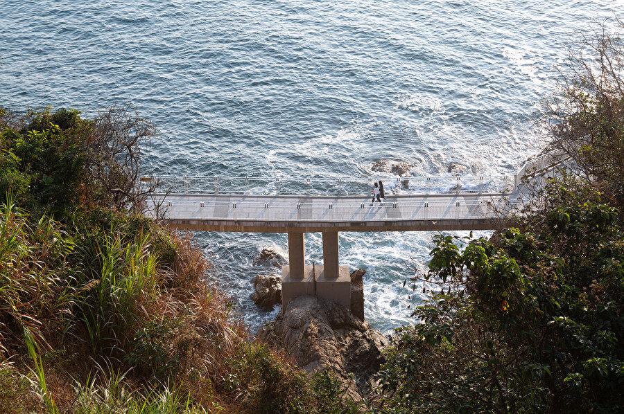 Dameisha bölümü: Tahta yol, orta seviye ormandan deniz kıyısındaki Jura Kayalarına bağlanıyor ve ziyaretçileri doğal manzaraya yönlendiriyor.