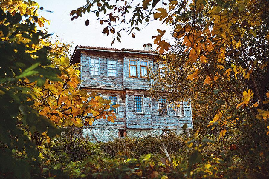 Kastamonu'nun yemyeşil sahil ilçelerinden biri İnebolu'da, bahçeli ahşap bir evde doğdum.