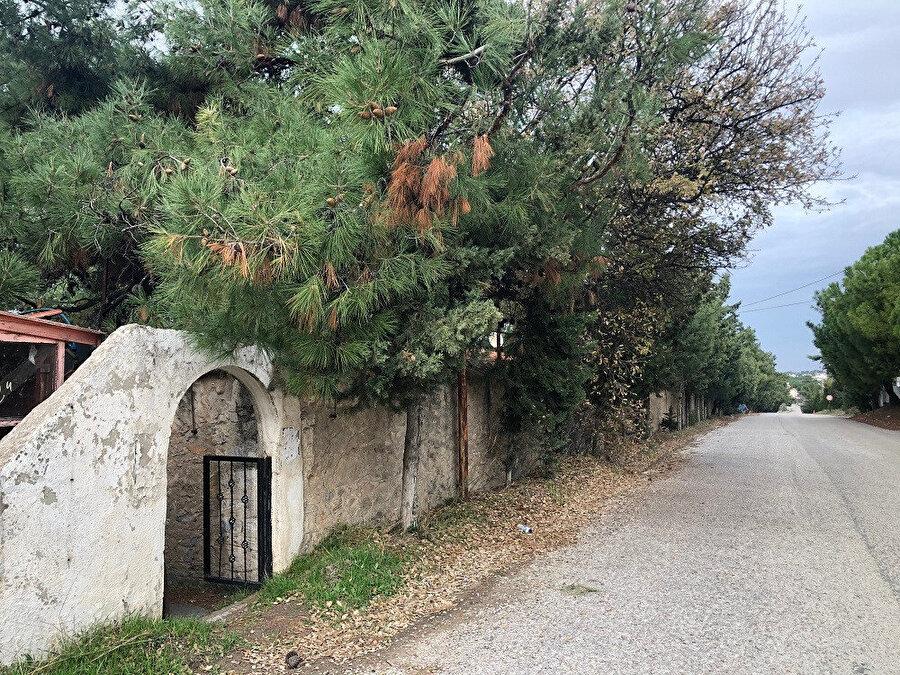 Dalyan Köyü yolu ve Gürel Yazlık Evi'nin dış duvarı. Fotoğraf: Uluç Algan