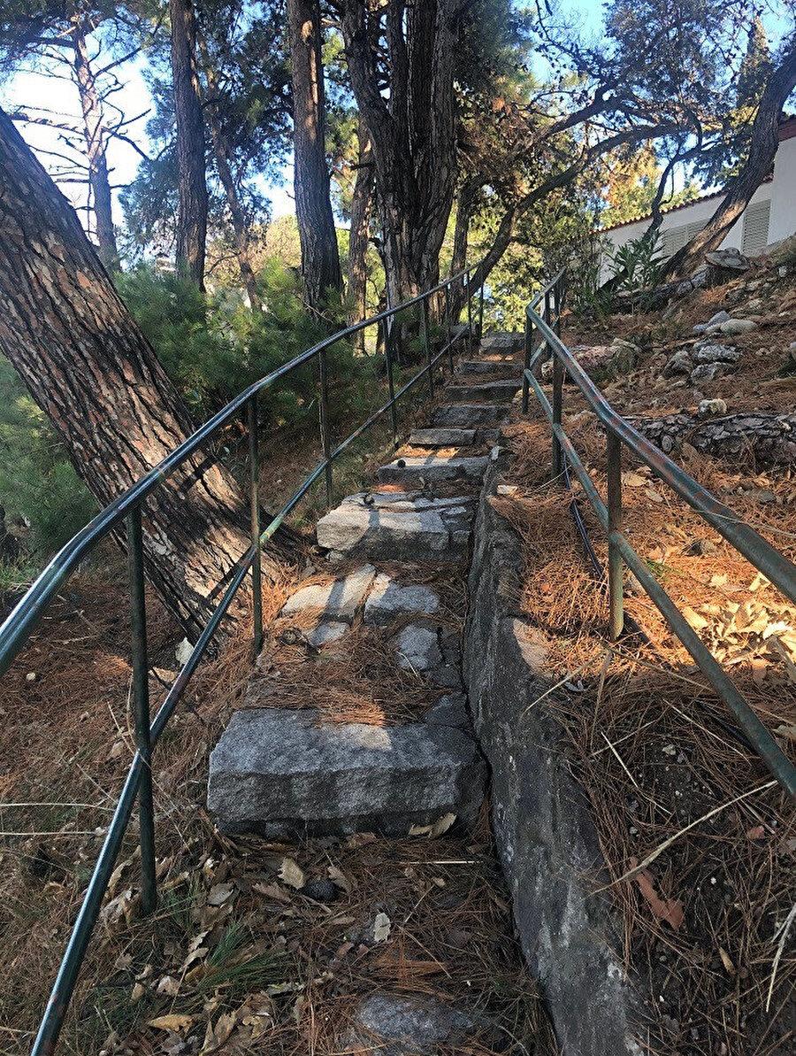 Sahilden Gürel Yazlık Evi'ne çıkan merdiven. Fotoğraf: Lâl Dalay