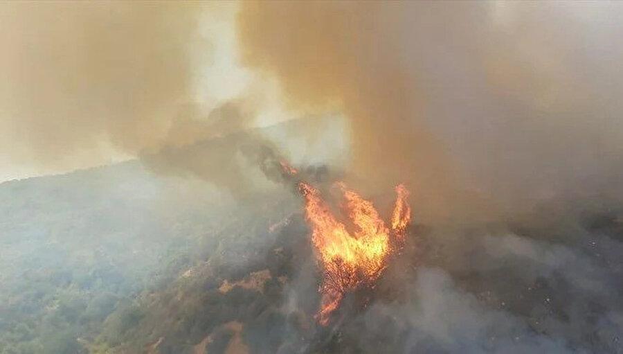 Yangın alanından bir görüntü