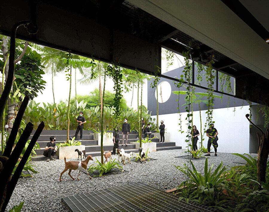 Micro Tropicality, form ve mekândan ödün vermeden yerel tropik mimariyle uyum sağlıyor.