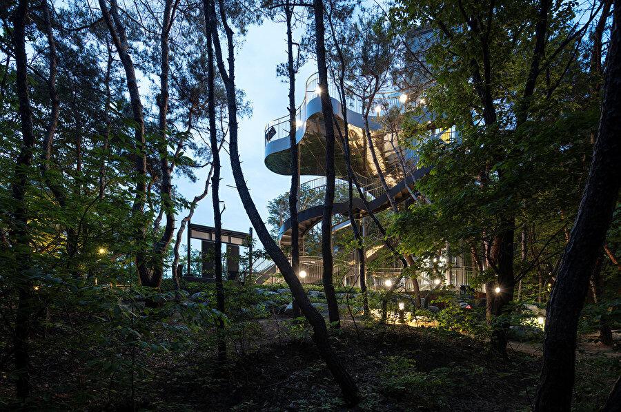 Yapı, orman içerisinde açıklık oluşturarak doğanın yeni bir elemanı olarak işlev görüyor.