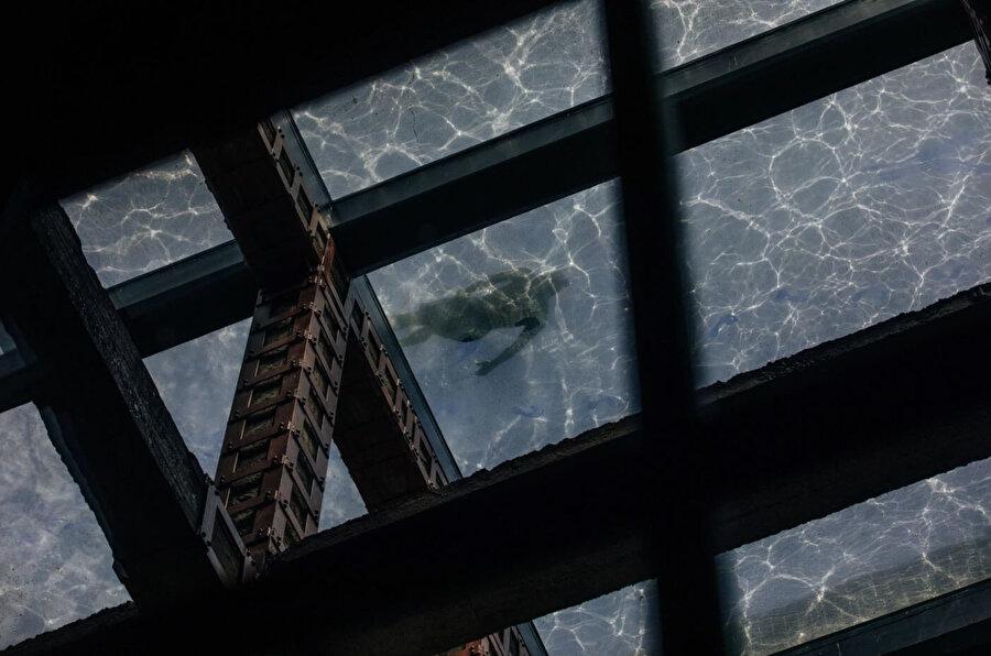 Lobinin çatısındaki yüzme havuzu binaya doğal ışık sağlıyor.