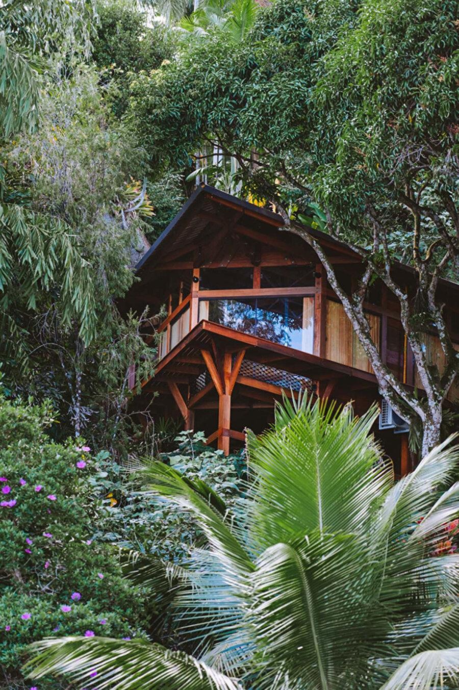Bow House, Brezilya'nın yemyeşil bir ormanında mango ağaçları arasında yer alıyor.