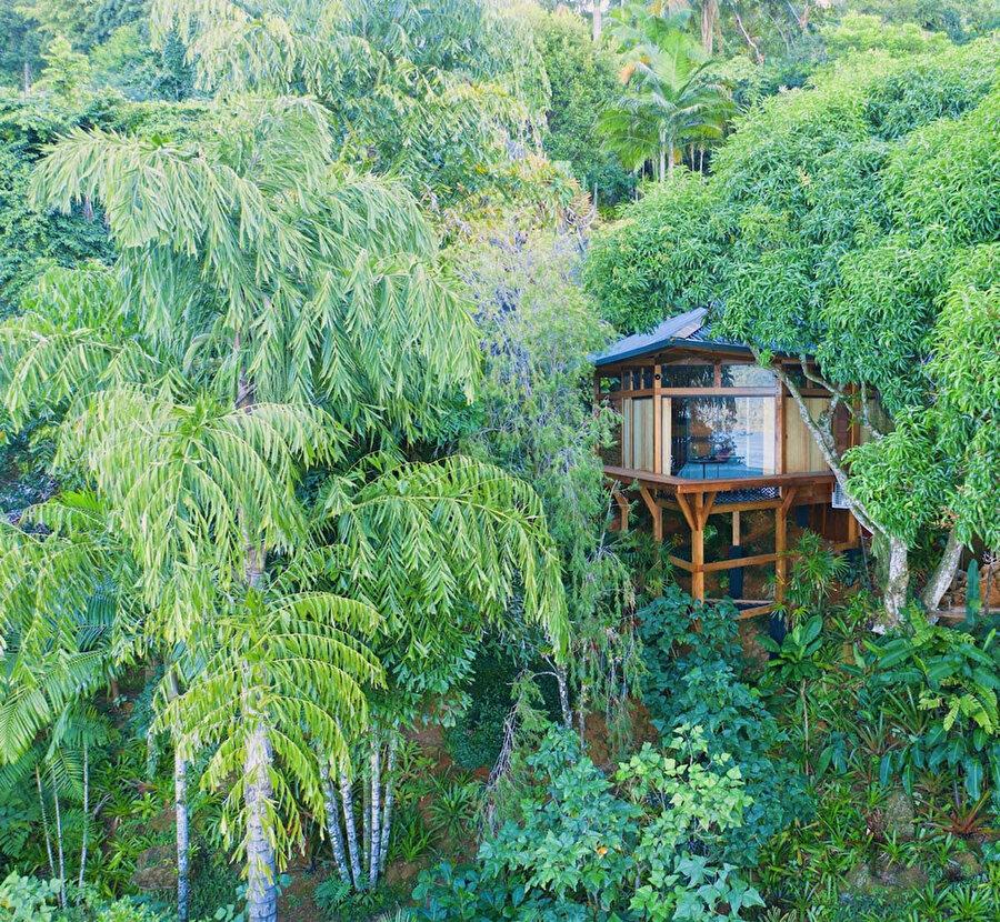 Bow House, Brezilya.