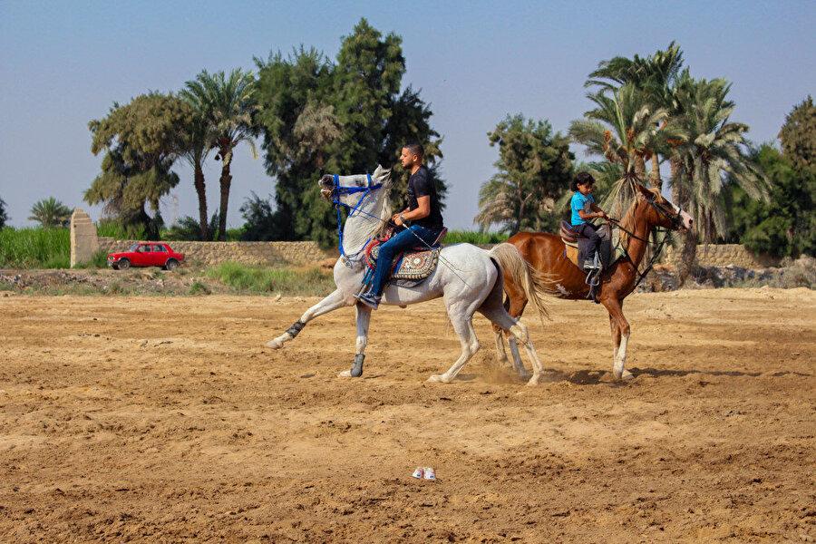 Maharetleriyle boy gösteren Dimu atları.