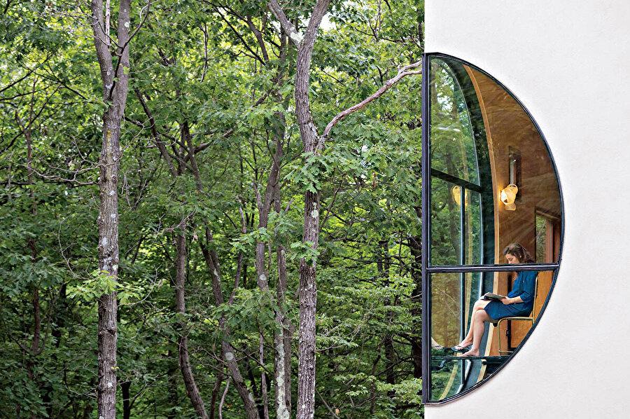 Doğanın iç mekana aktarıldığı dairesel pencere.