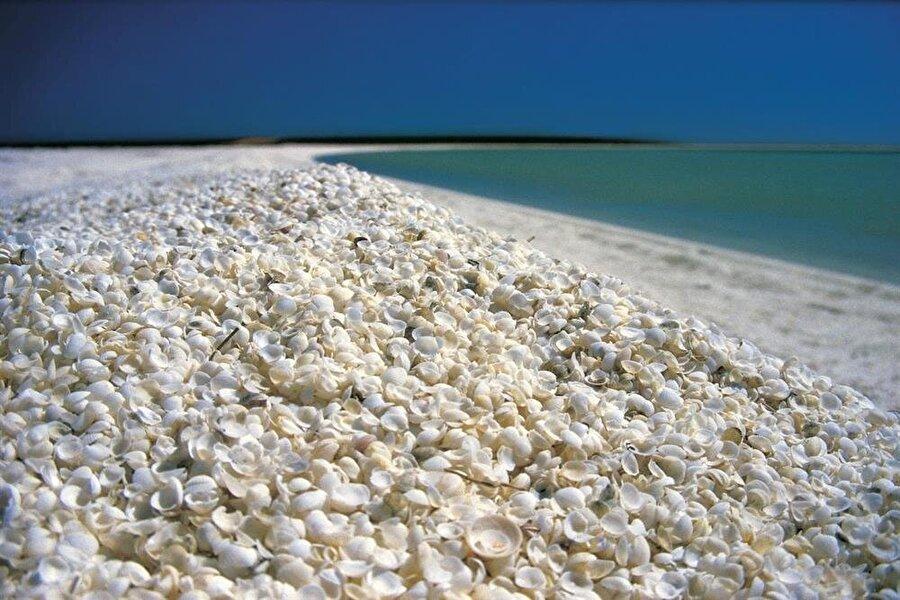 Shell Beach                                      Batı Avustralya'nın güneyinde ki Denham'da bulunan plaj turistlerin uğrak yeri. Plajın tamamında deniz kabukları bulunuyor. Güneşin etkisiyle ise kabukların parlaması inanılmaz bir görüntü ortaya çıkıyor.