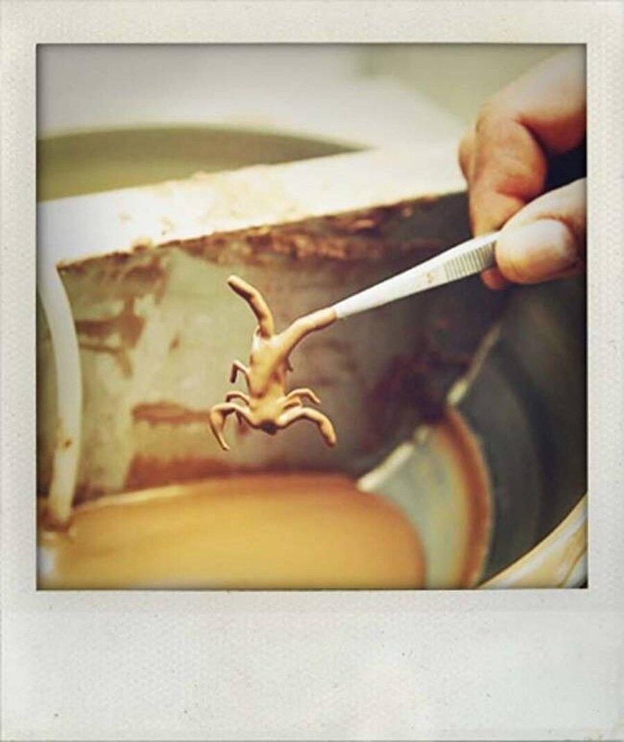 Çikolata sosuna bandırıyorlar                                                                                                                                                                                                                                                                                                                                                                                                                        Böcekler özel hazırlanmış sıvı çikolata sosuna bandırılıp donmaya bırakılıyor.