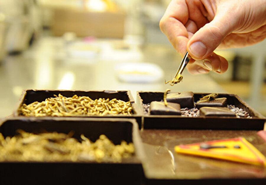 Protein deposu                                                                                                                                                                                                                                                                                                                                                                                                                        Cırcır böceği, solucan ve akrep gibi seçenekleri olan bu çikolatalar, protein yönünden oldukça zengin.