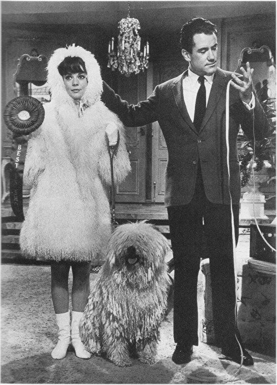 Penelope (1966) Yönetmen: Arthur Hiller Yazarlar: E. V. Cunningham, George Wells Oyuncular: Natalie Wood, Ian Bannen, Dick Shawn, Peter Falk, Lila Kedrova, Lou Jacobi, Jonathan Winters.