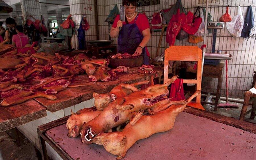 Her Yıl 40 bin köpek öldürülmesi - Festival                                                                                                                Liçi meyvesi ve Köpek Eti Festivalinde insanlar Yulin'de köpek yahnisi ve liçi meyvesi yemek için toplanıyor. 2009 yılından beri kutlanan festival kapsamında her yıl 40 bini aşkın köpek acımasızsa öldürülüyor.  Yaz başlangıcı nedeniyle yapılan festivalde, köpek eti yenilmesinin şans getireceğine inanılıyor. İki bin yıldan bu tarafa köpek eti yenilen Çin'de, köpek eti oldukça lezzetli bir et türü olarak addediliyor.