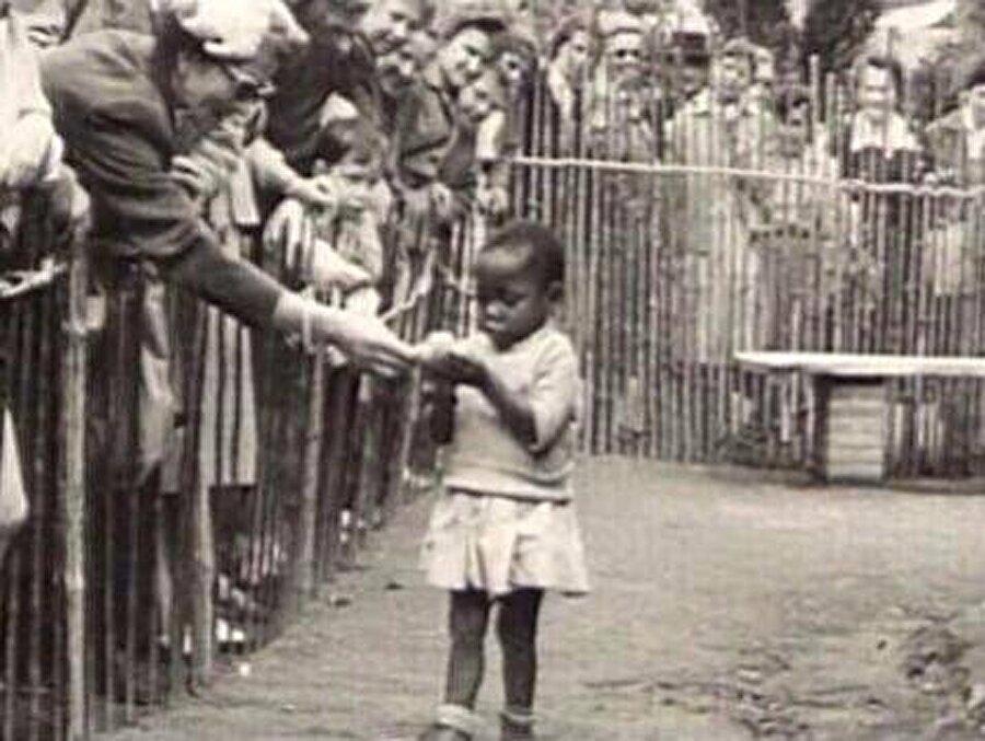 Belçika'da Afrikalı bir kız çocuğu hayvanat bahçesinde sergileniyor!