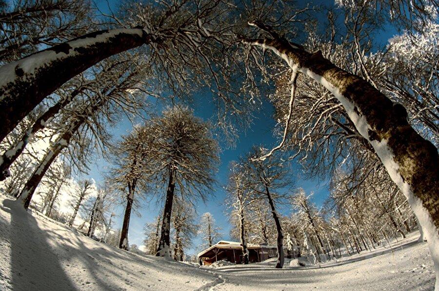 Sapanca, Sakarya                                                                                                                                                                                                                                                                                                                                                                                   Zamanı kısıtlı olup tatile gitmek isteyenler için en ideal bölgelerden biri, Sakarya. Dilerseniz, günübirlik gitmeniz de mümkün. Temiz orman havası ve bol oksijeni ile nefes almanızı kolaylaştıracak bir kış tatili sizi bekliyor.