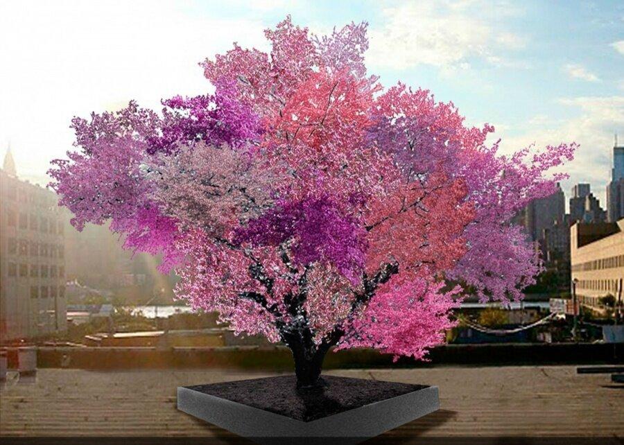 Frankenstein ağacı                                                                           Kaynak: brightside.me