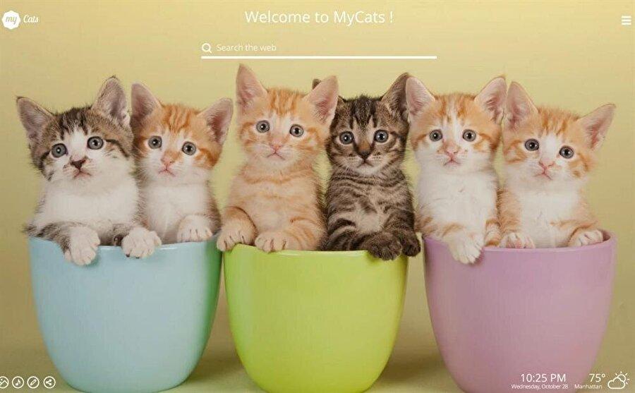 My Cats New Tab