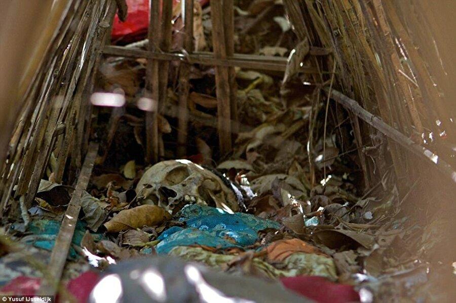 Cesetler iyice kuruduktan sonra kafatası ve kemikler toplanıyor.