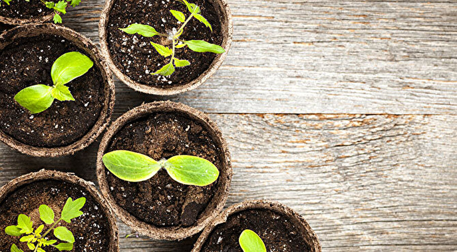 Hassas ve özenli olun                                                                            Polen alerjisi olanların hassas yapıları; evde yetiştirilen bitkilere, yünlü kıyafetlere karşı da duyarlıdır. Özellikle bahar döneminde evinizde bitki yetiştirmemeye ve yünlü, toz biriktiren kıyafetlerden uzak durmaya özen gösterin. Bu konuda hassas davranmalısınız.