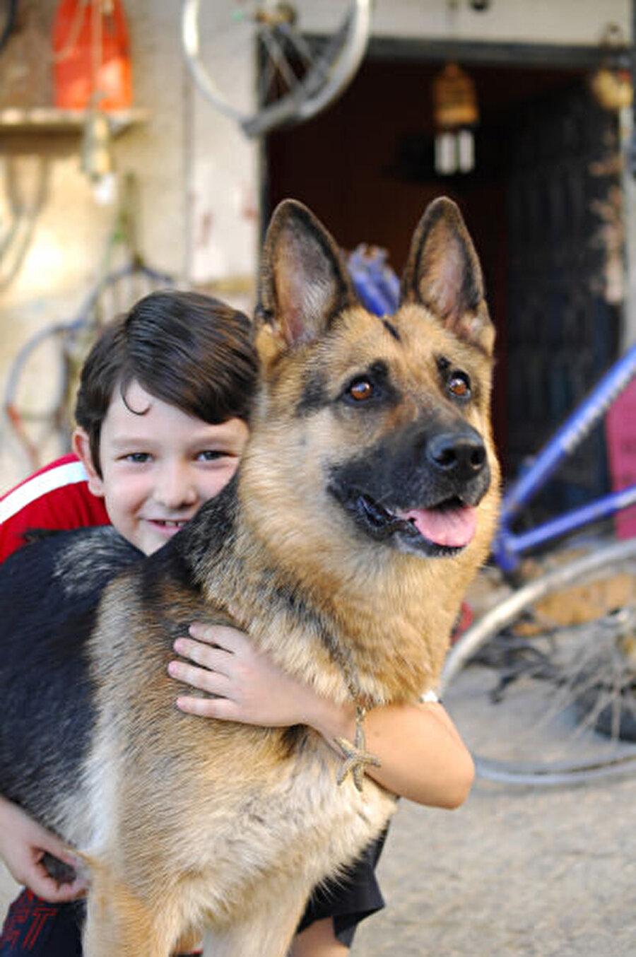 Pulsar: Ekran ömrü uzun sürmese de unutulmayan oyuncu köpeklerden birisi olmuştu Pulsar da.