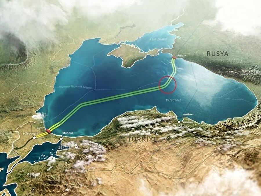 Avrupa'ya doğalgazını Ukrayna üzerinden satan Rusya,  Ukrayna ile yaşadığı büyük sorunlarla birlikte doğalgazını alternatif bir yolla taşımak istiyordu. Türk Akımı projesi bu nedenle gündeme geldi.