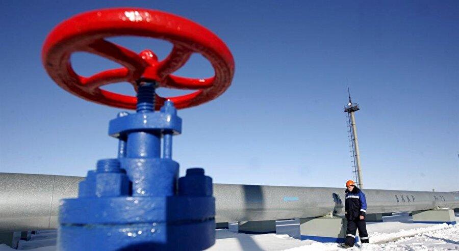 Türk Akımı projesiyle Karadeniz'in altından geçecek iki boru hattı üzerinden Türkiye ve daha geniş bir bölge için yıllık toplam 31,5 milyar metreküp doğal gaz sağlanması planlanıyor. Birinci boru hattı Türk piyasası için, ikincisi ise Avrupa ülkeleri için kullanılması planlanıyor.