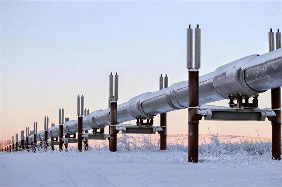 Tahmini bitişi Aralık 2019 olarak belirlenen yaklaşık 19 milyar dolara mal olacak projenin maliyetinin Karadeniz ayağını Gazprom, Trakya ayağını ise Rusya ve Türkiye ortak olarak karşılayacak.