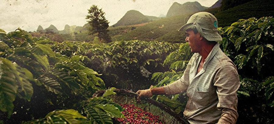 2. Kahve üretiminde rekor Brezilya'nın                                                                                                                                                                                          Bugün Dünya üzerinde en fazla kahve üretimi bir Güney Amerika ülkesi olan Brezilya'ya ait. Futboluyla ünlü olan ülkeden, tükettiğimiz kahvelerin %33'ü elde ediliyor.