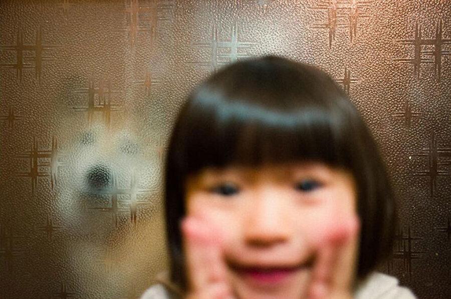 Bir köpek, küçük bir kızın dostu olabilir