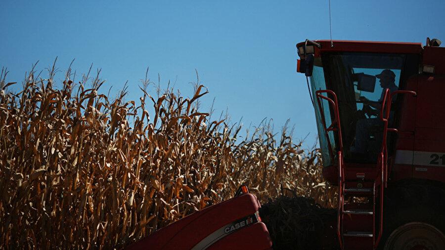 Tarım sektörü                                                                            ABD'de hükümetin kapanmasından bakanlıkların raporlama ve veri faaliyetleri de olumsuz etkilendi. Örneğin Tarım Bakanlığı bazı çiftçilik raporlarını açıklamayacağını duyurdu.     ABD Tarım Bakanlığı'nın Çin'le yaşanan ticaret savaşının da odağında bulunan soya fasulyesi stoklarına ilişkin bir tahmin raporu açıklaması bekleniyordu. Çiftçiler, tahıl tüccarları ve ekonomistler bilançolarını bu rapora göre düzenliyor, yeni dönem için bu rapora göre hasat hesapları yapılıyordu.