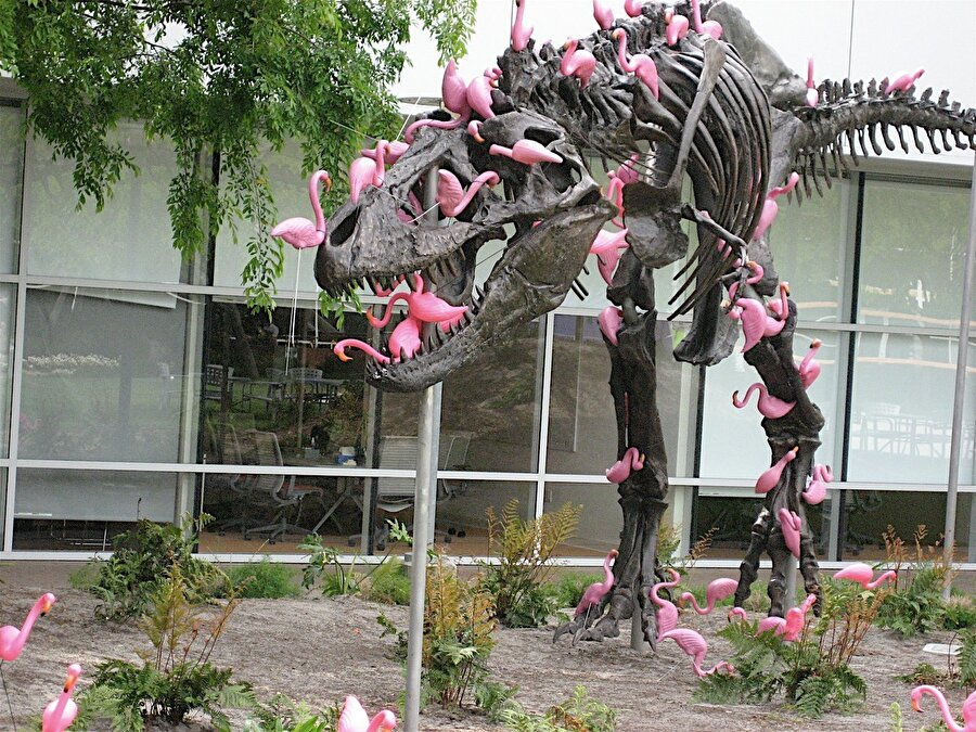 Ayrıca, genellikle flamingolarla kaplı ünlü bir dinozor heykeli de var. Bunun asıl amacı çalışanların nesli tükenmekte olan hayvanlara saygı duymasını aşılamak olduğu düşünülüyor.