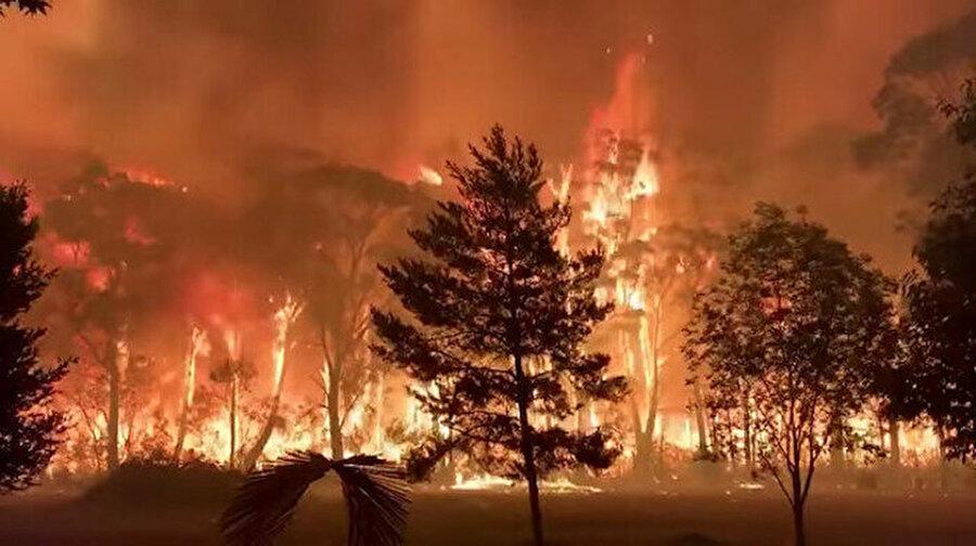 Avustralya'da 5 milyon hektarlık alan kül oldu Avustralya'da çıkan orman yangınlarında 5 milyon hektarlık alan kül oldu. Eylül ayından bu yana en az 9 kişinin de hayatını kaybettiği yangınlarla ilgili konuşan İtfaiye sözcüsü Angela Burfor, yangınların ölçeğinin, yangınların başladığı bu mevsimde benzeri görülmemiş boyutta olduğunu söyledi.