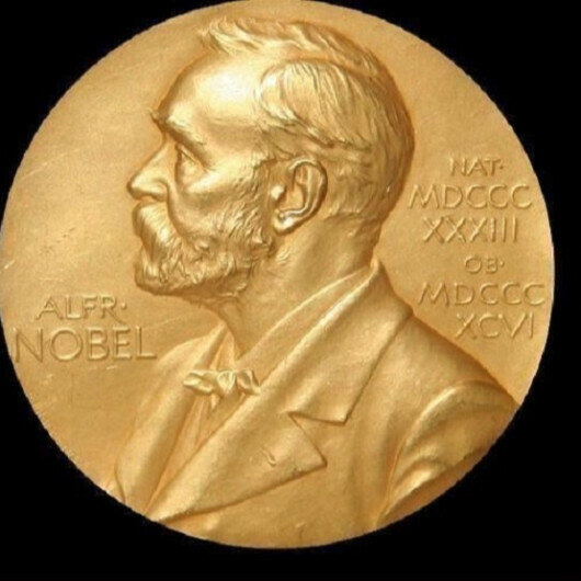 Nobel Prize in Chemistry goes to developers of new molecular construction tool