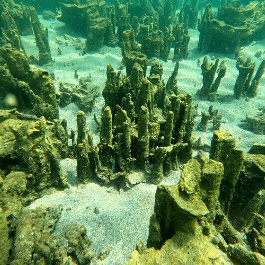 New microbialites discovered in eastern Turkey