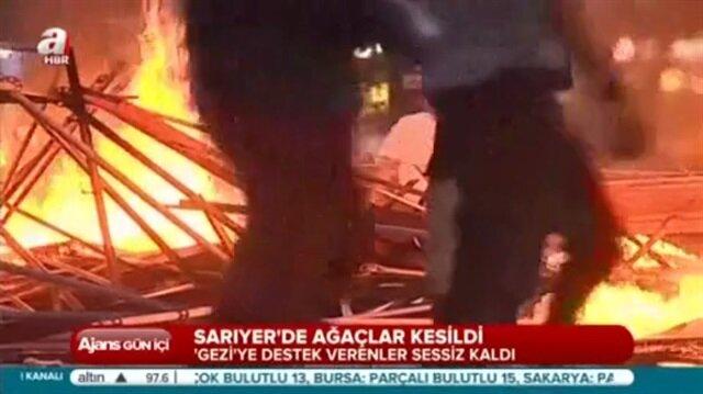 CHPli belediyelerden tam gaz ağaç katliamı