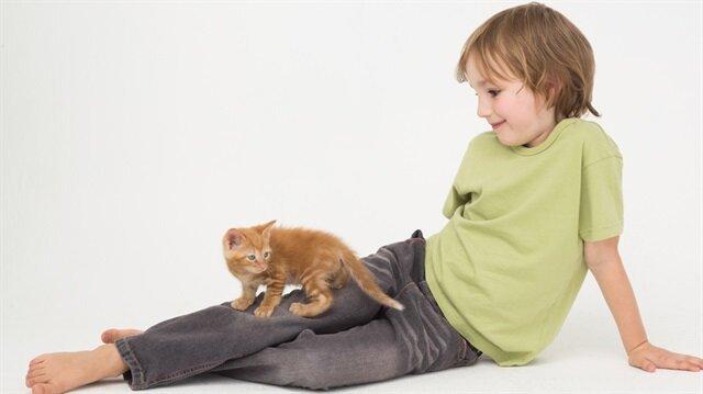 Kedilerin hiç bilmediğiniz manevi faydası