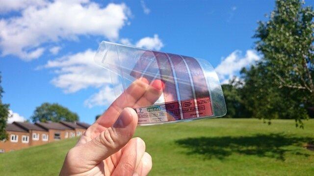 Geleceğin enerji kaynağı böcekler!